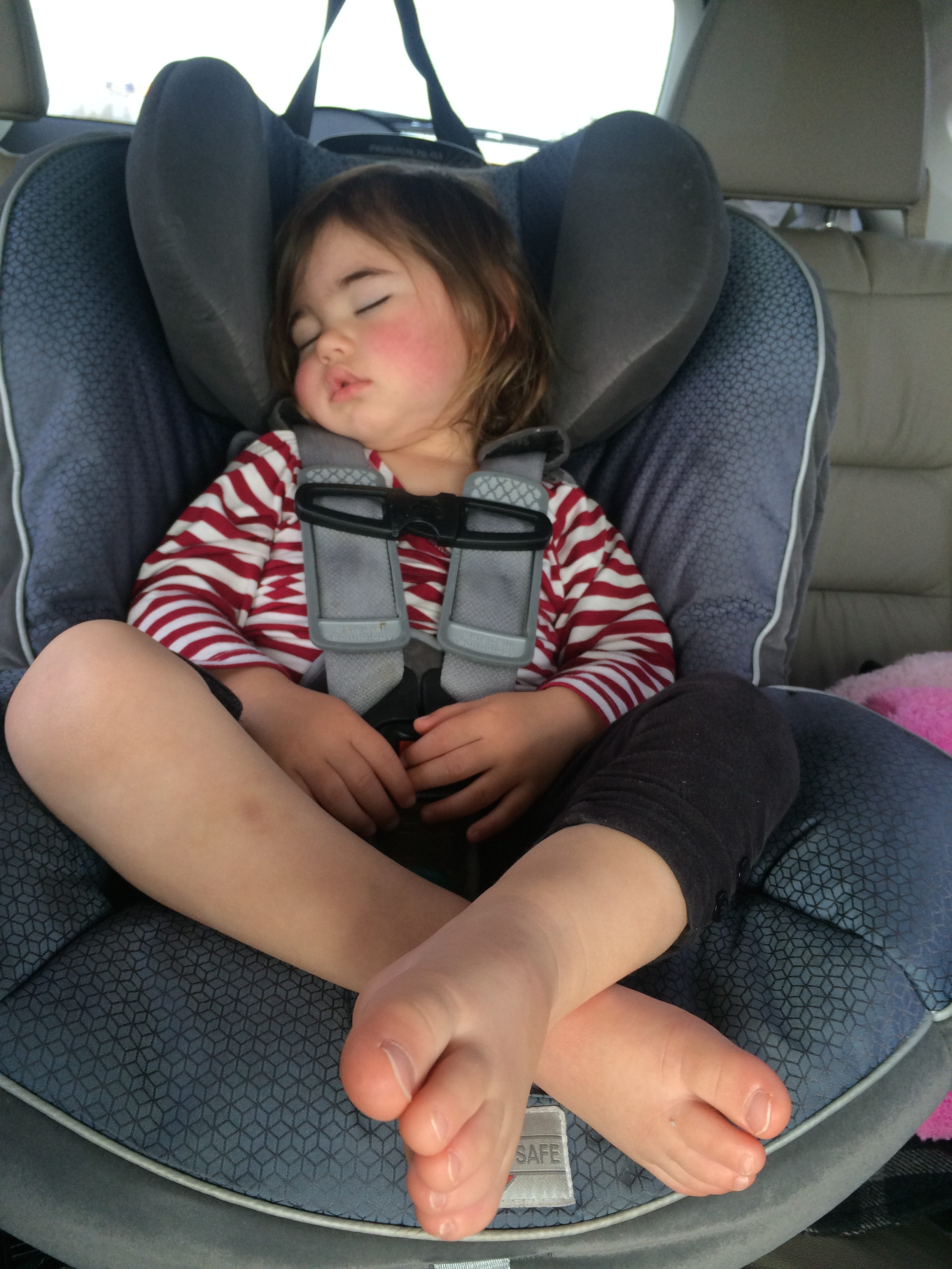 Car Seat Buckle Safety Basics on Car Seat Safety